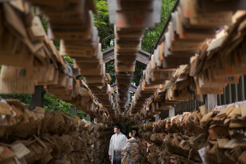 氷川神社公式だから可能な境内撮影