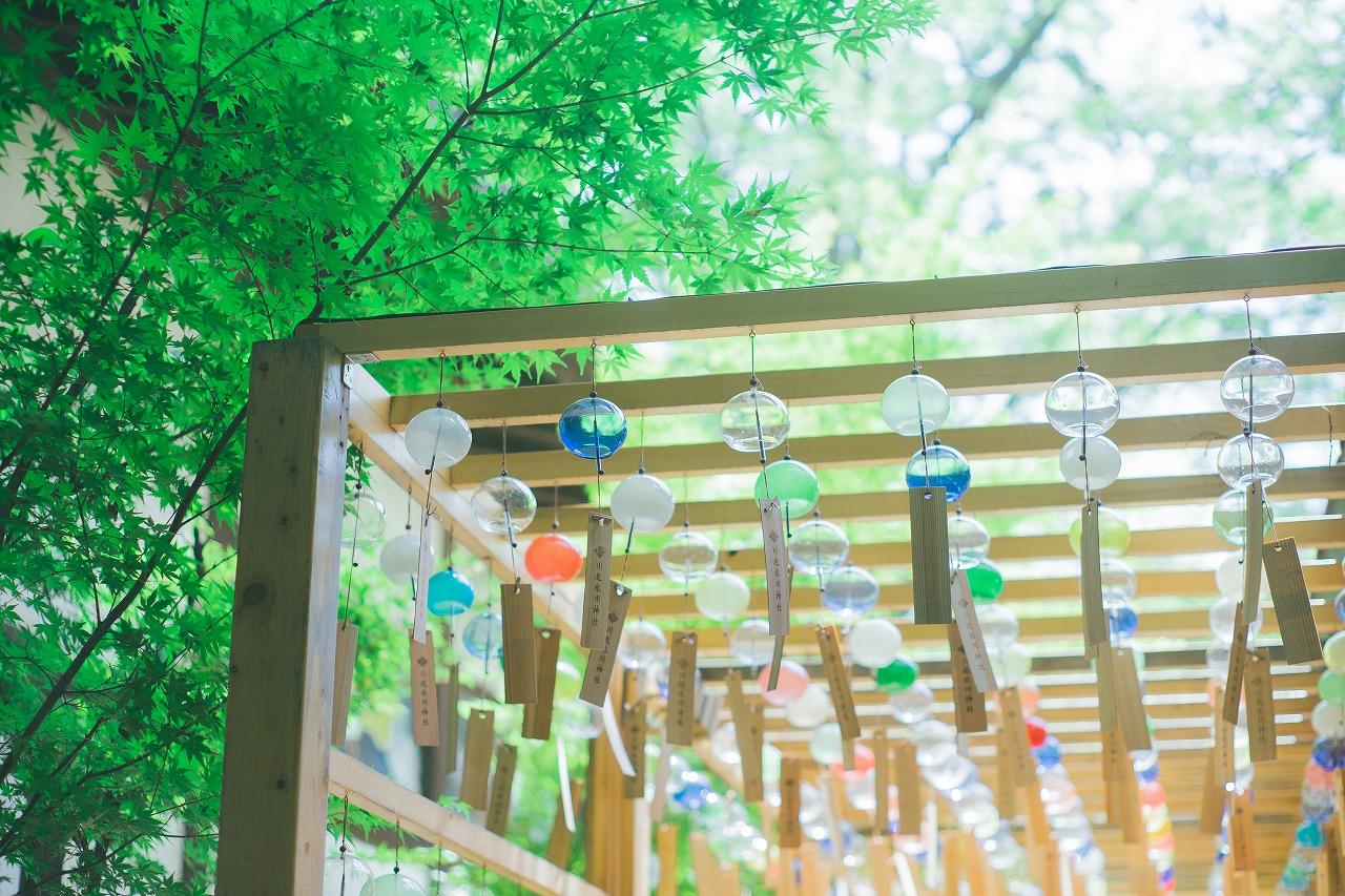 境内を彩るたくさんの江戸風鈴